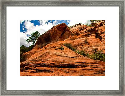 Tokina Framed Print by Ryan McGinnis