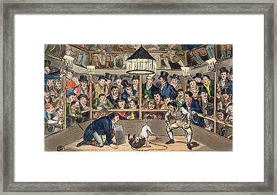 Tom And Jerry Sporting Their Blunt Framed Print by I. Robert & George Cruikshank