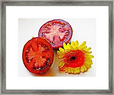 Tomato And Daisy 2 Framed Print by Sarah Loft