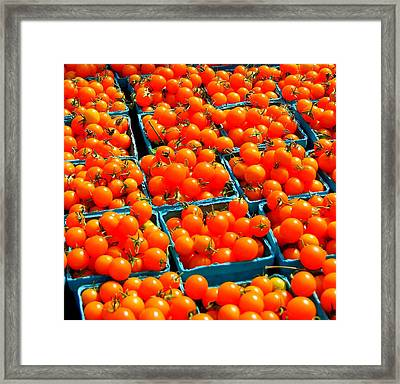 Tomato Squares Framed Print by Mamie Gunning