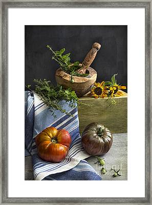 Tomatoes And Herbs Framed Print by Elena Nosyreva
