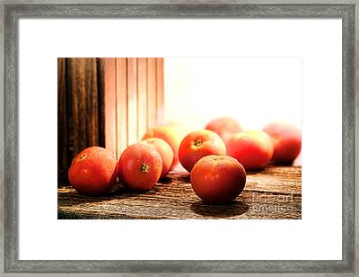 Tomatoes In An Old Barn Framed Print by Olivier Le Queinec