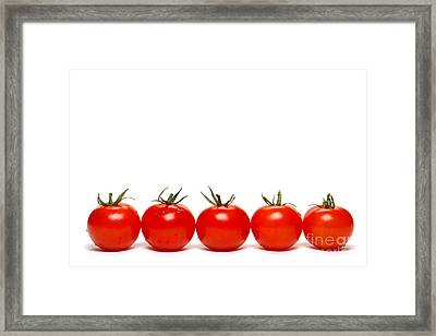 Tomatoes Framed Print by Olivier Le Queinec