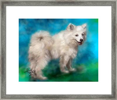 Too Sexy For My Fur Framed Print by Colleen Taylor