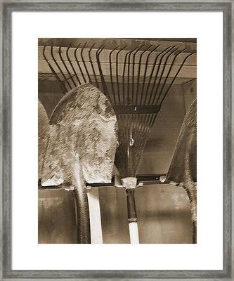 Tool Shed 1 Framed Print by Steve Ohlsen