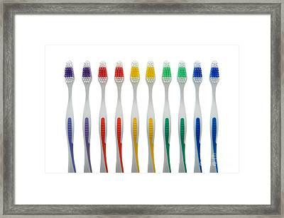 Toothbrushes Framed Print by Olivier Le Queinec