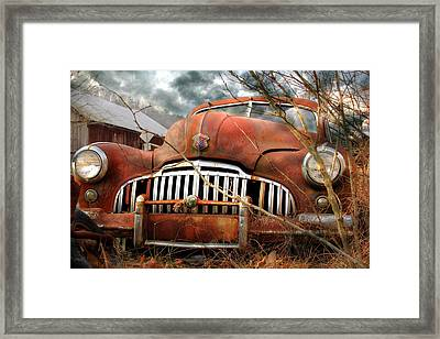 Toothless Framed Print by Lori Deiter