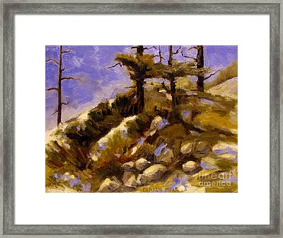 Top Of The Hill Framed Print by Charlie Spear