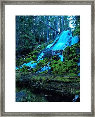 Top Part Of Clearwater Falls Framed Print by Teri Schuster