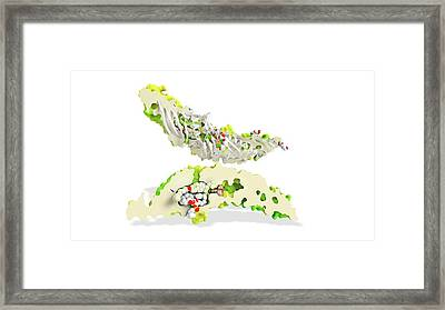Torcetrapib And Cholesterol Framed Print by Ramon Andrade 3dciencia