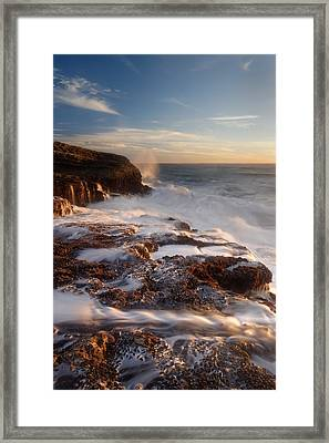 Torment Panther Beach Framed Print by Francesco Emanuele Carucci