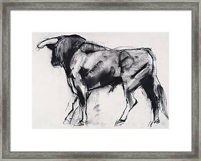 Toro Azul   Study Framed Print by Mark Adlington