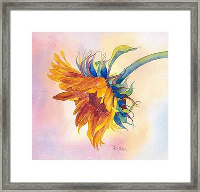 Touch Of Gold Framed Print by Pat Yager