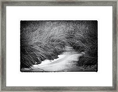 Touch Of Winter Framed Print by Fred Lassmann