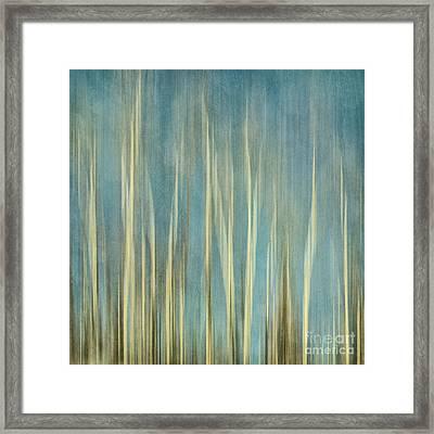 Touching The Sky Framed Print by Priska Wettstein