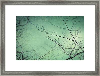 Touching The Sky Framed Print by Taylan Soyturk