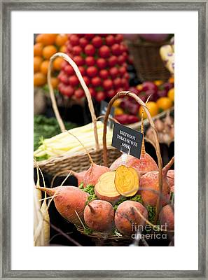 Touchstone Gold Framed Print by Anne Gilbert