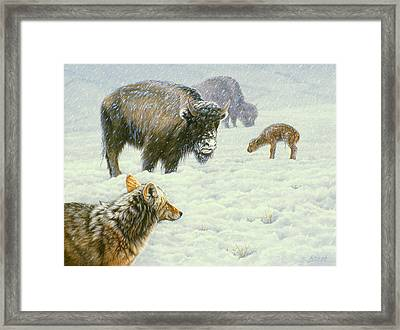 Tough Day In May Framed Print by Paul Krapf