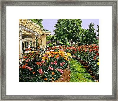 Tournament Of Roses II Framed Print by David Lloyd Glover
