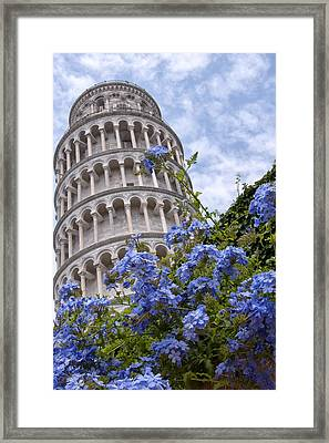 Tower Of Pisa With Blue Flowers Framed Print by Melany Sarafis
