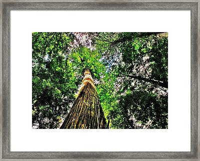 Towering Framed Print by Benjamin Yeager