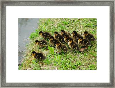 Traffic Jam Framed Print by Frozen in Time Fine Art Photography