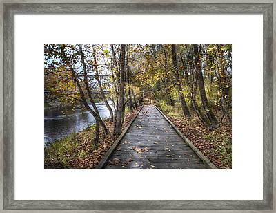 Trail At The River Framed Print by Debra and Dave Vanderlaan