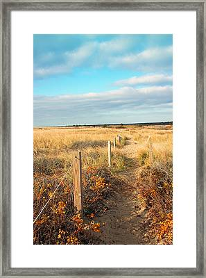 Trail By The Sea Framed Print by Brooke Ryan