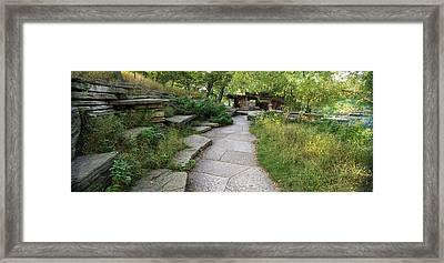 Trail Caldwell Lily Pond Lincoln Park Framed Print by Steve Gadomski