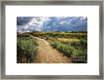 Trail In Badlands In Alberta Canada Framed Print by Elena Elisseeva