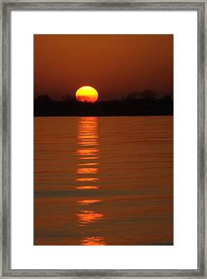 Trailing Sun Framed Print by Karol Livote