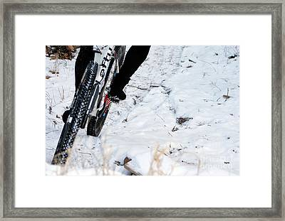 Trailing The Snow  Framed Print by Steven  Digman