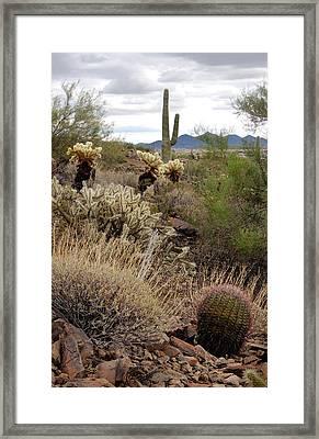 Trailside Framed Print by Gordon Beck