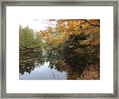Tranquil Getaway Framed Print by Brenda Brown
