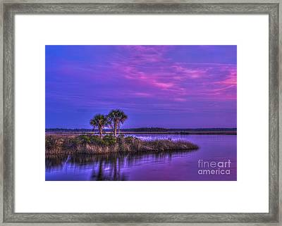 Tranquil Palms Framed Print by Marvin Spates