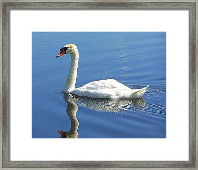 Tranquility Framed Print by Frozen in Time Fine Art Photography