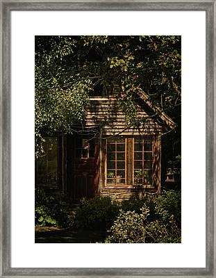 Tranquilizer Framed Print by Odd Jeppesen