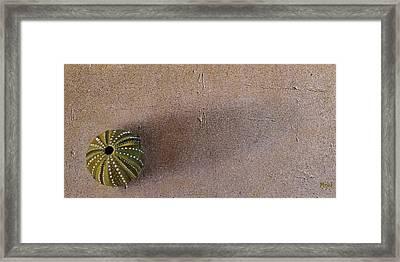 Tranquillity Framed Print by Leana De Villiers