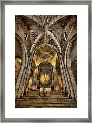Transcendent Framed Print by Stephen Stookey