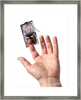 Trapped Framed Print by Sinisa Botas