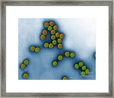Trasmission Electron Micrograph Framed Print by Eye of Science