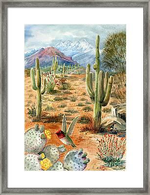 Treasures Of The Desert Framed Print by Marilyn Smith