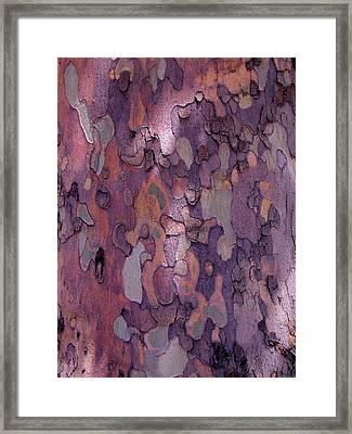 Tree Abstract Framed Print by Rona Black