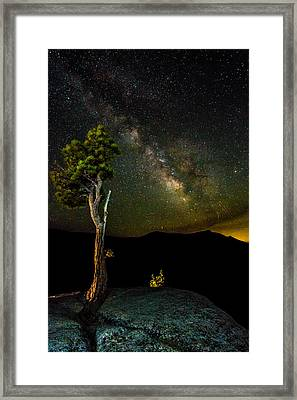 Tree Amongst The Stars Framed Print by Mike Lee