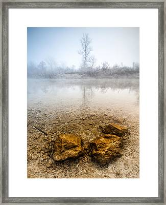 Tree And Rocks Framed Print by Davorin Mance