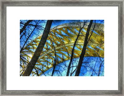 Tree Bridge Designs Framed Print by Mel Steinhauer