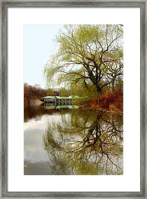 Tree By The River  Framed Print by Mark Ashkenazi