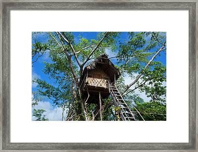 Tree House In A Banyan Tree Framed Print by Michael Runkel