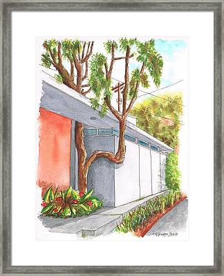 Tree In U In Hollywood Hills - California Framed Print by Carlos G Groppa