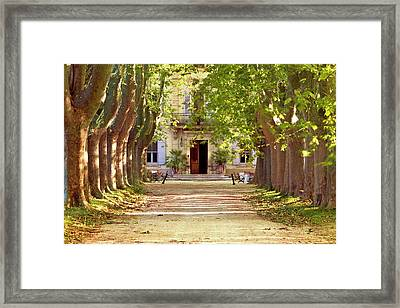 Tree-lined Drive To Villa Near Saint Framed Print by Brian Jannsen